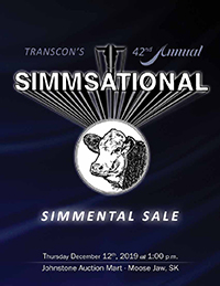 image of 2019 Simmsational Sale Catalogue cover