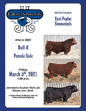 Sale Catalogue cover